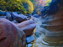 CANYON FLOOR ZION