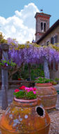 OLD CHURCH GARDEN , GREVE IN CHIANTI, ITALY (PANO)