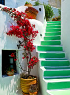 GRECIAN STEPS, SANTORINI GREECE