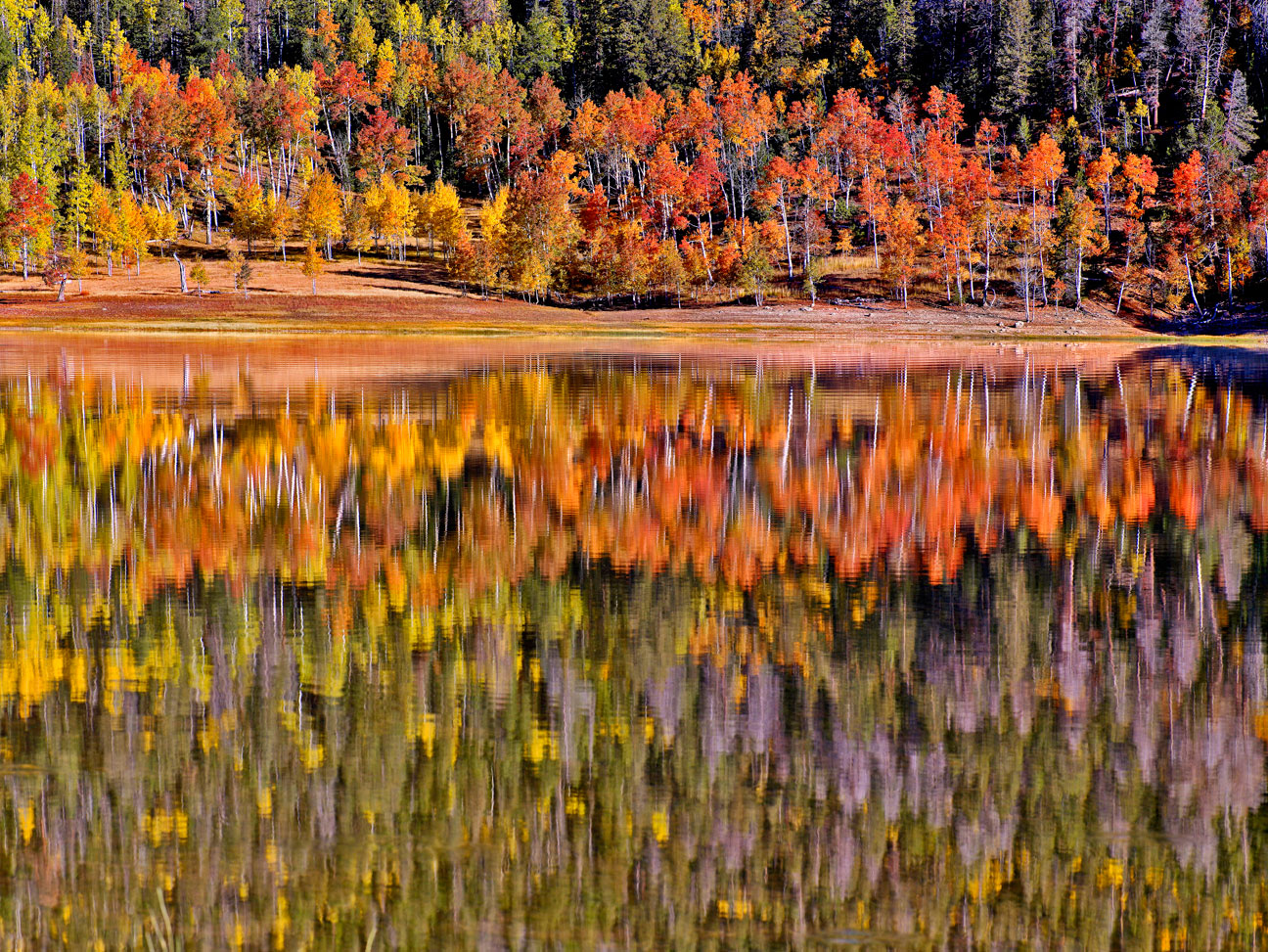 NAVAJO LAKE FALL