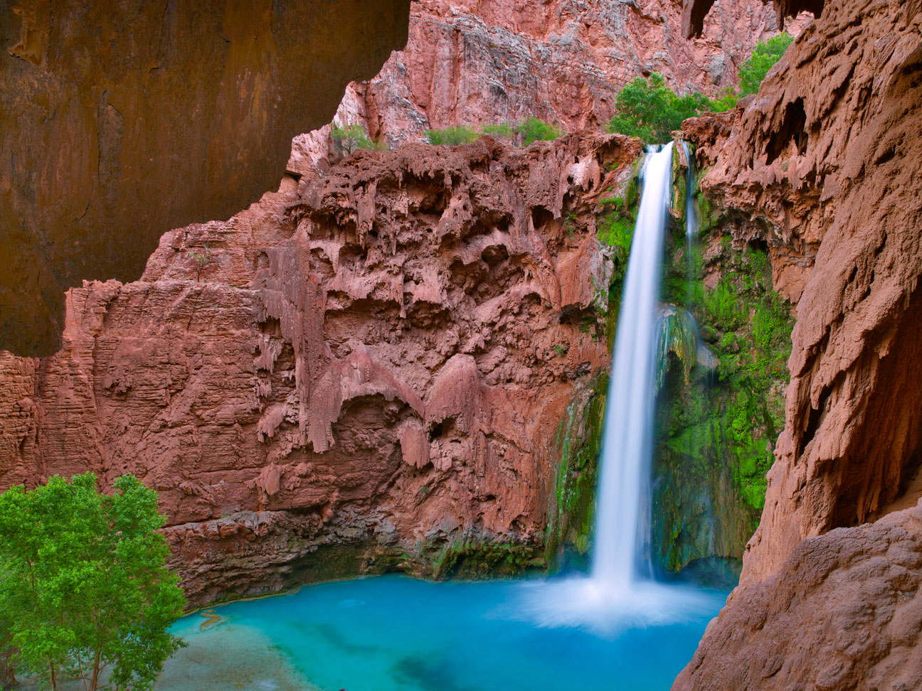 OASIS IN THE CANYON