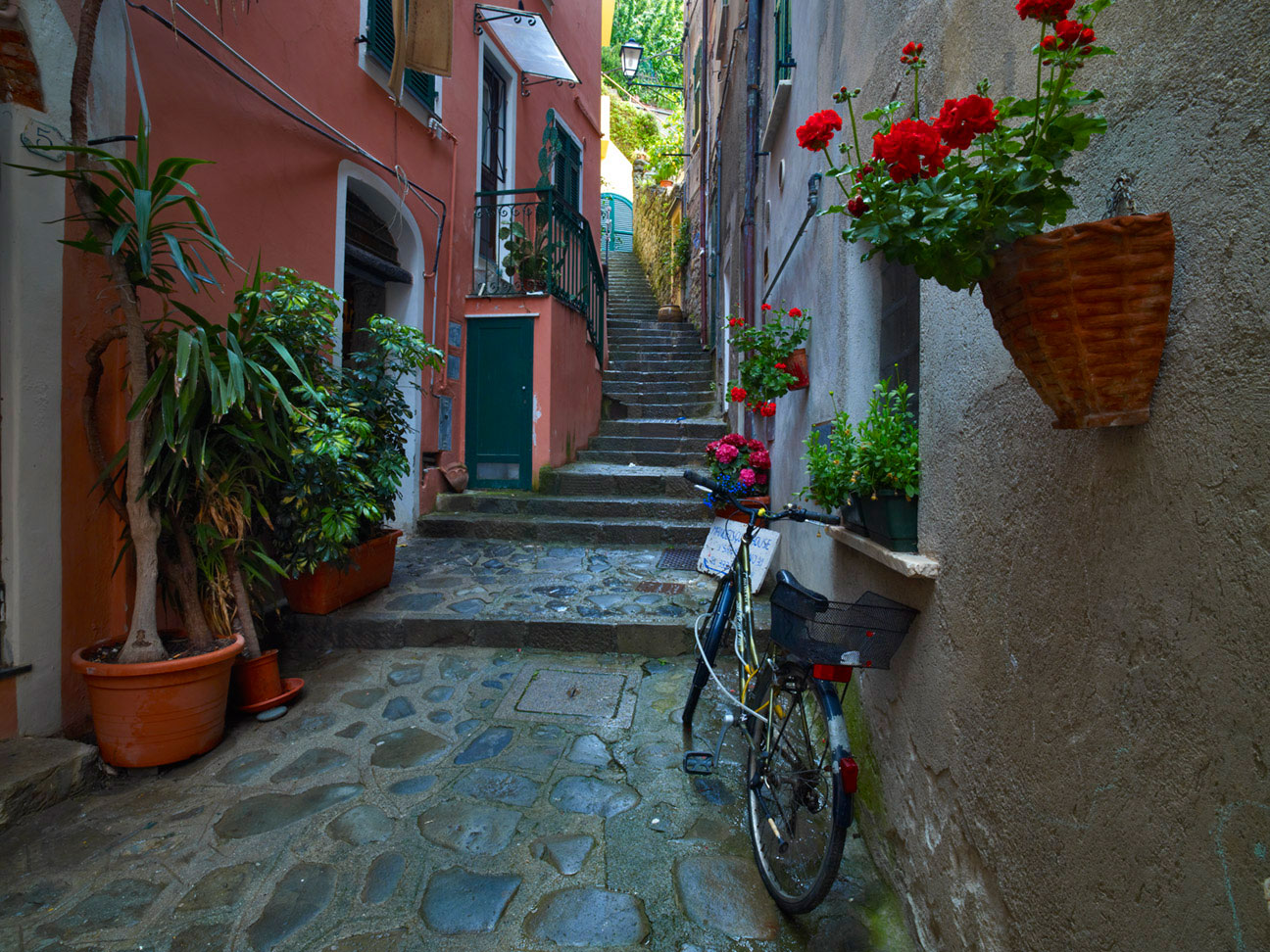 SIDE ALLEY MONTEROSSO