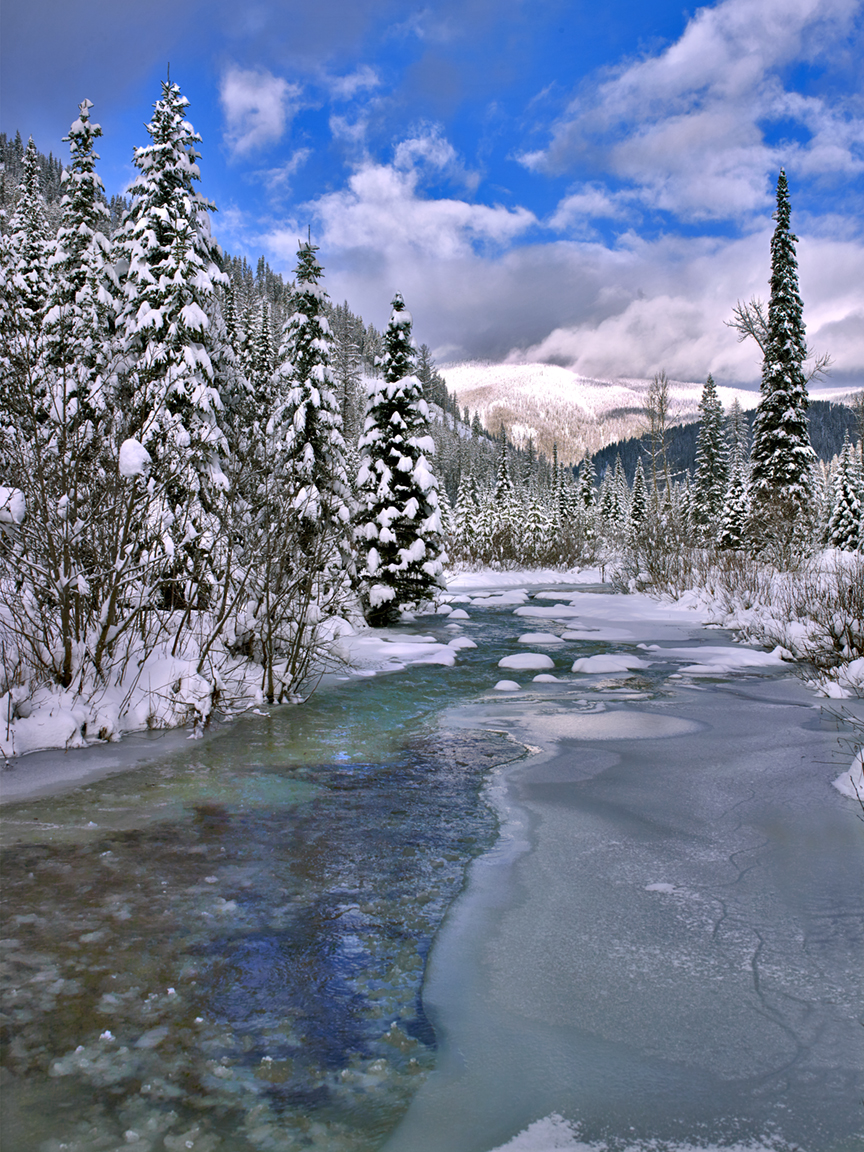 montana winter | william carr gallery | modern master of photography