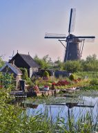 HOUSE BY THE WINDMILL
